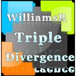 WilliamsR Triple Divergence indicator and Market Analyzer with alert for NinjaTrader 8.